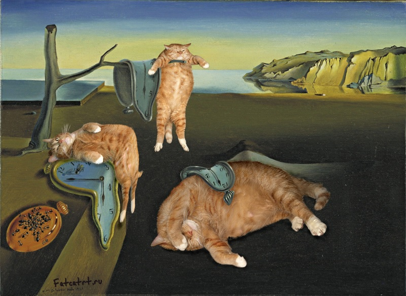 Digitally image edited parody of Dali's Melting Clocks artwork; featuring fat cats